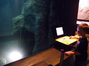 Sam guiding an ROV into an underwater cave at the Bishop Museum.