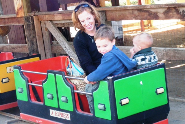 The train at the petting zoo was a big hit.