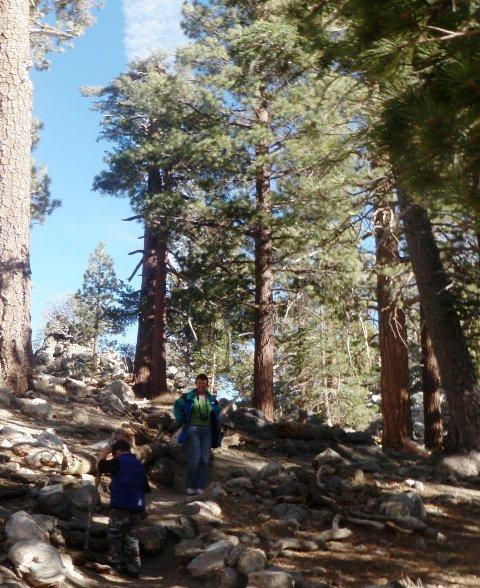 Mom and Sam hiking around Mt San Jacinto at 8500 ft.
