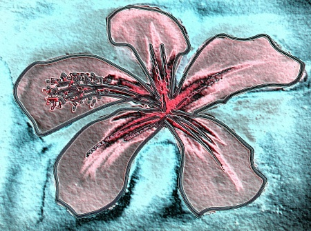 pink-hibiscus-sandstone-2.jpg