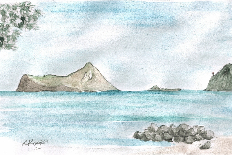 A drive down to Halona Blow Hole and Sea Life Park inspired me to capture this last windward islet in watercolor.