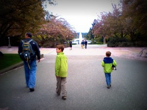 Out to Burke Museum on UW campus, followed by a walk around the campus. The cherry blossoms are in bloom!