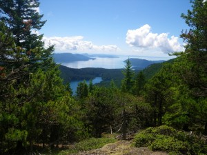 View from Mount Constitution, looking south through the San Juan Islands.