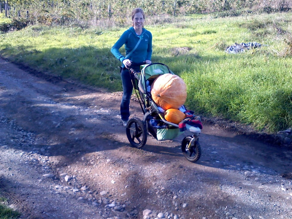 Walking my big babies home from the pumpkin patch. I really miss having my boys in the stroller. The big pumpkin is 65 lbs! That is how much weight I gained with Sam. That is funny.