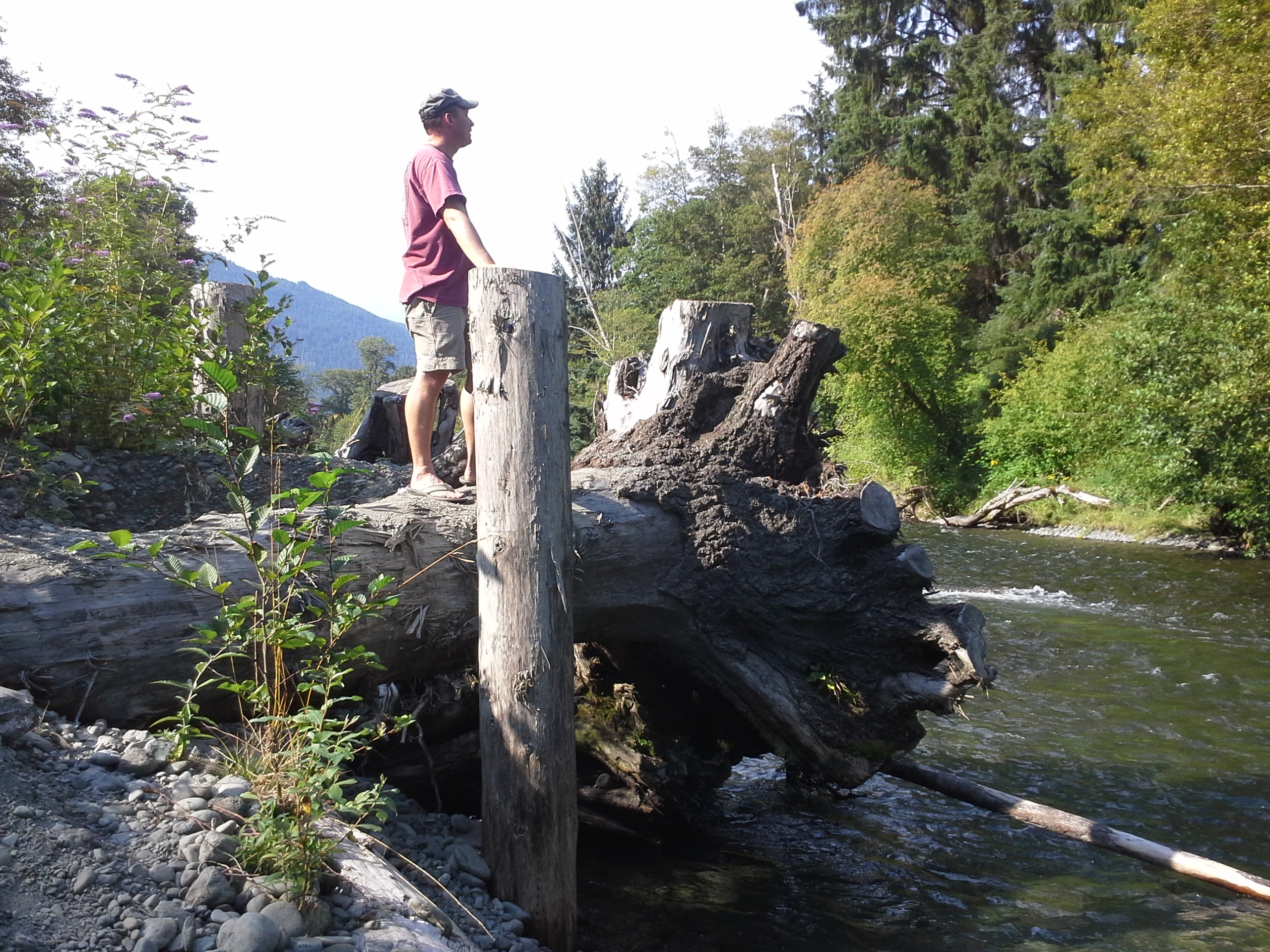 Dave at the Dosewallups River on a peaceful afternoon following a great hike on the Steam Donkey trail.
