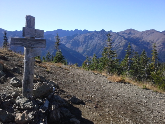 The summit of Marmot Pass - what a fantastic hike with everything you'd want in an Olympic excursion - river, craggy peaks, fall foliage just turning, and 12 miles to enjoy all that! (roundtrip)