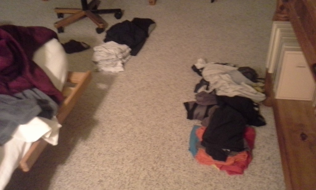 "I paid Ben $5 to do all the laundry - get it out, sort, fold and put away. He did as well as I do! Dave said ""that's not hard"" from across the house when I was in there marveling. Nuh uh! Not fair! Folding is not IMPORTANT! It just needs to be neat... harrumph!"