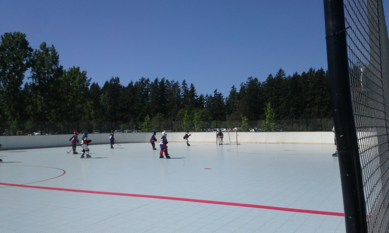 First scrimmages! hot hot day, then to a dressage clinic for me. Exhausting ;) But fun!
