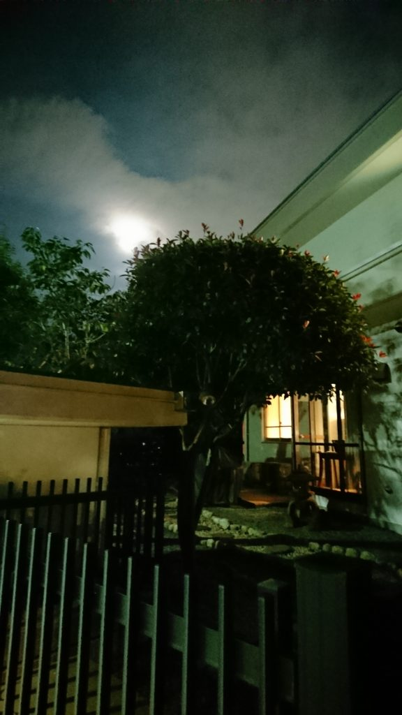 The entry to our house under a full moon.