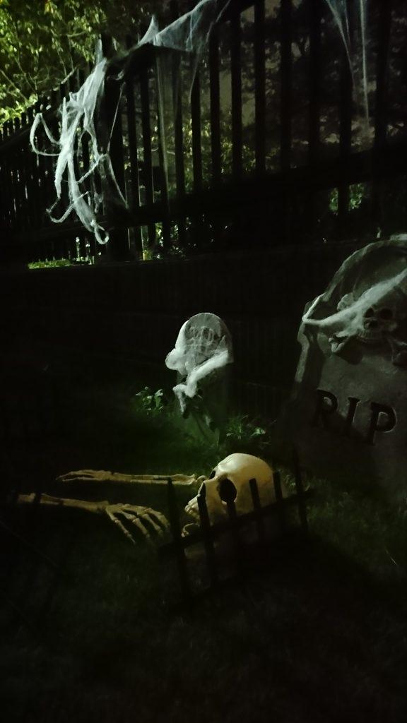 Ben's Halloween decor...very spooky!