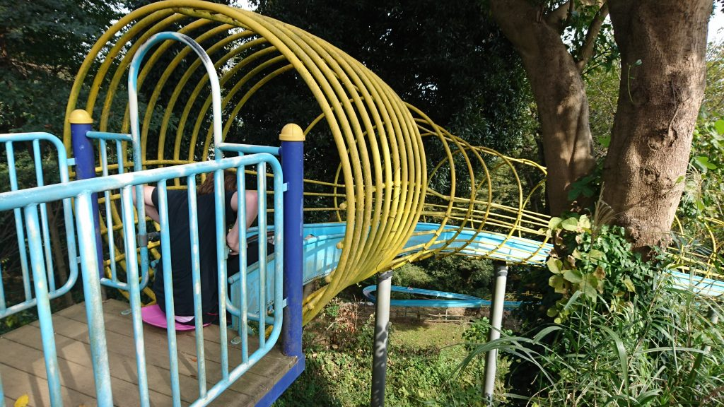The incredible roller slides at Kannonzaki which would not likely be installed in a public playground in the US!