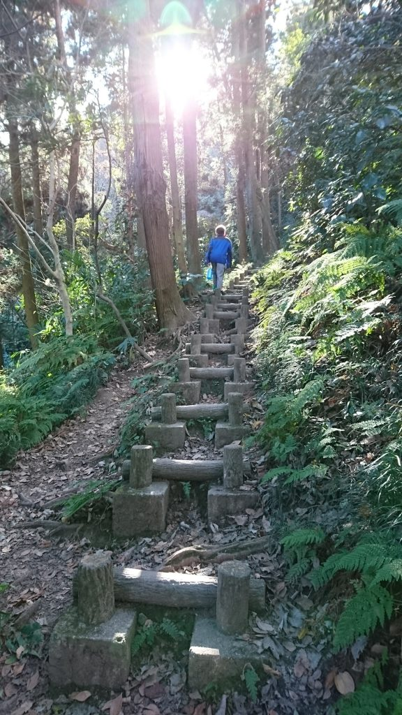 Ben hiking the many stairs up Ogusuyama. Perfect day for a hike to the highest point on Miura Peninsula.